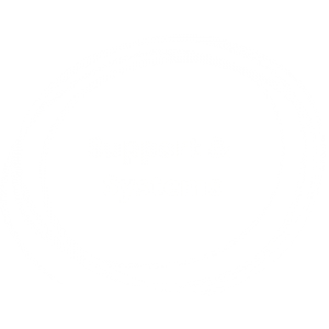 Support Systems 1
